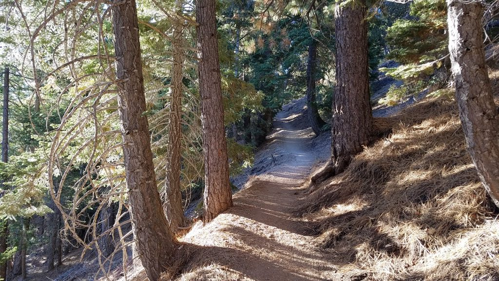 The long trek